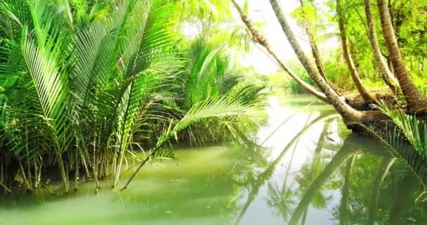 Wasserkanal durch tropischen Dschungel