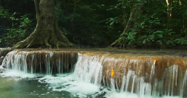 waterfall surrounded by green tropical forest