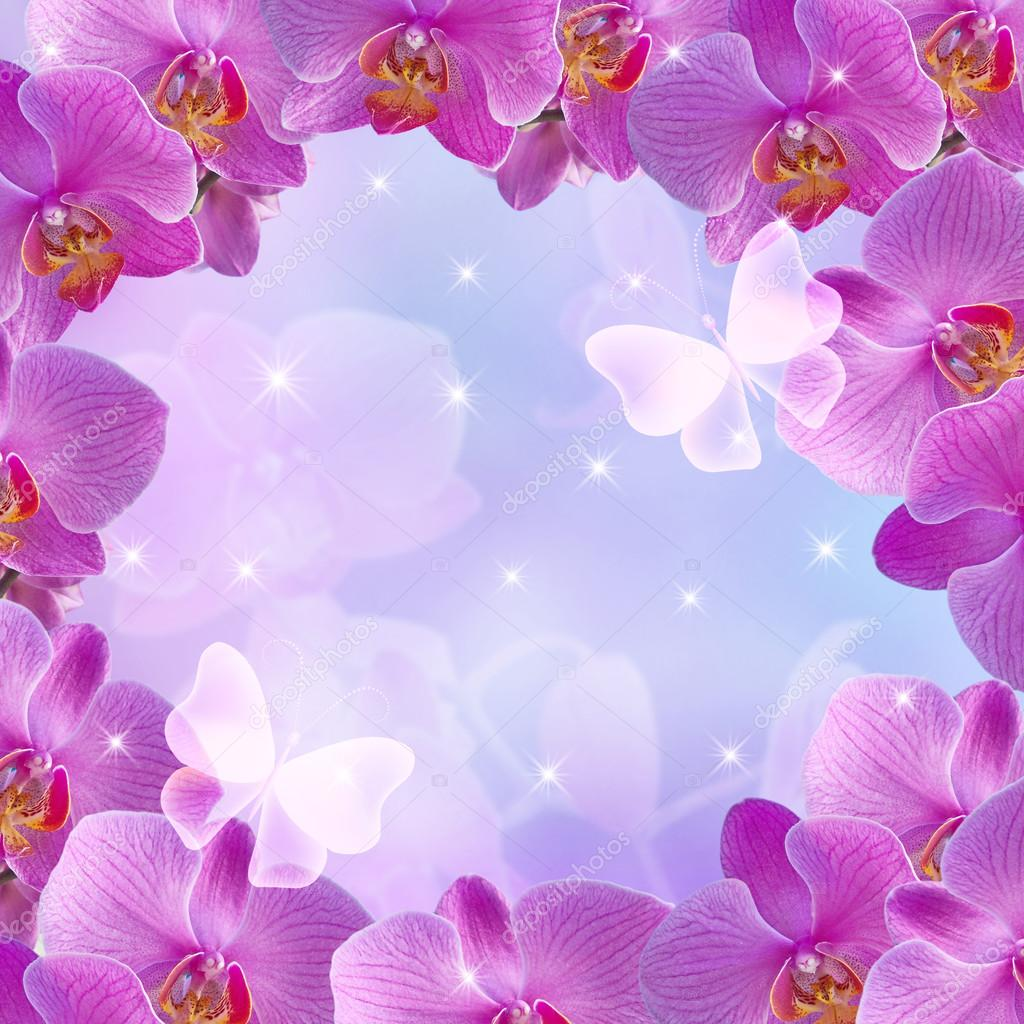 Orchids and glowing stars