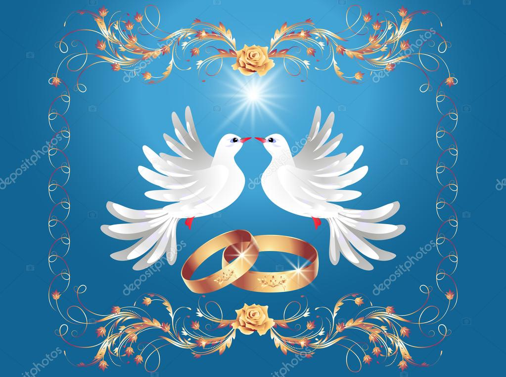 im u00e1genes  para boda palomas con anillos