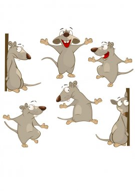 Set of Cute Cartoon Rats