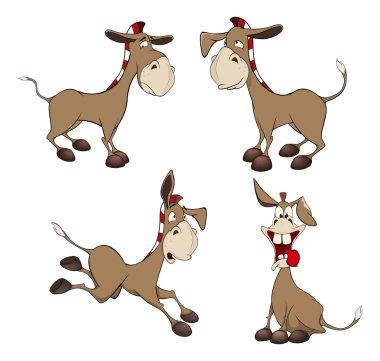 Set of burros