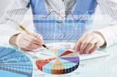 Analýza trhu a obchodní údaje
