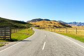 Alpi neozelandesi e strada