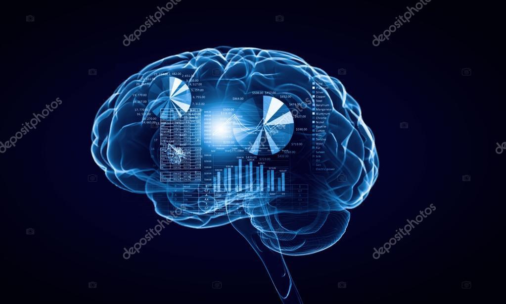 menschliche Gehirn — Stockfoto © SergeyNivens #77401560