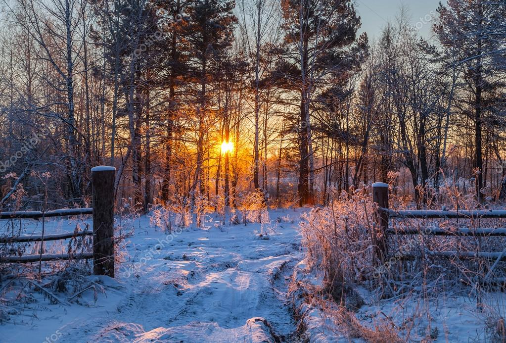Winter sunrise in Siberia.