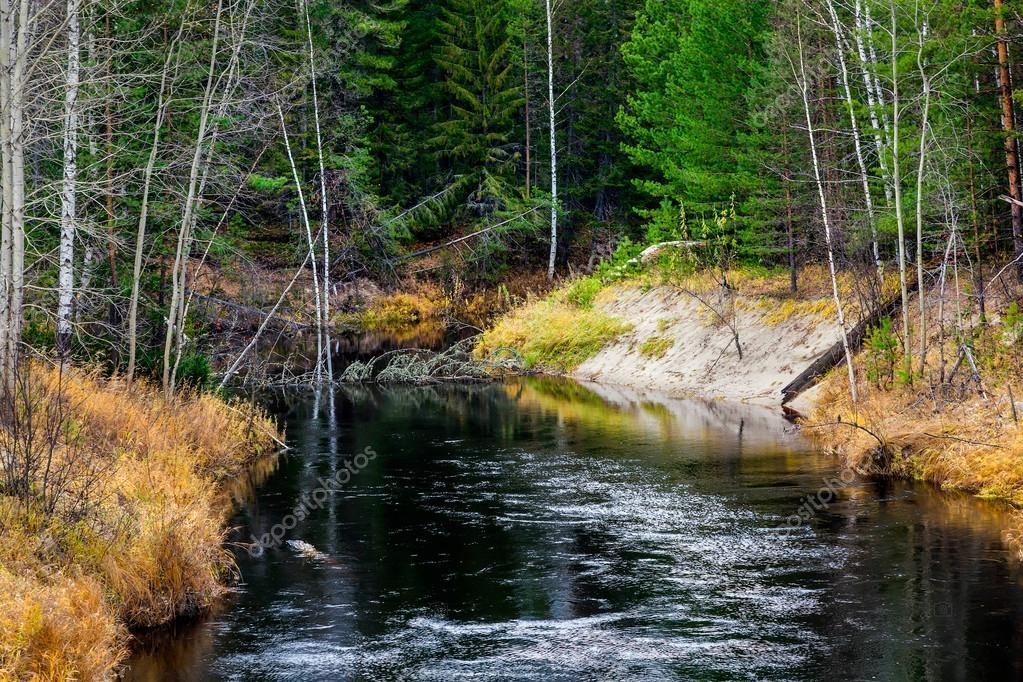 Black River in the Siberian taiga