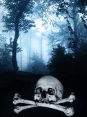 Cranio ed ossa nella foresta nebbiosa oscura