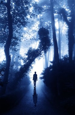 Man on road in foggy forest