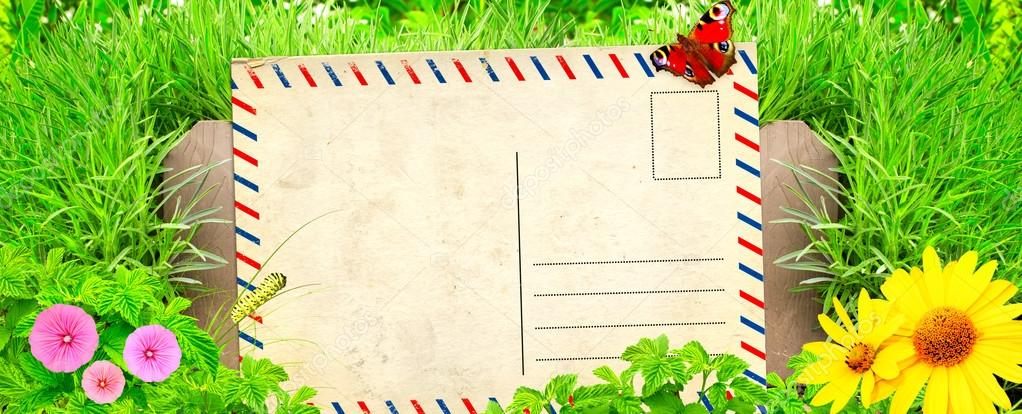 Summer background with old post card and green grass