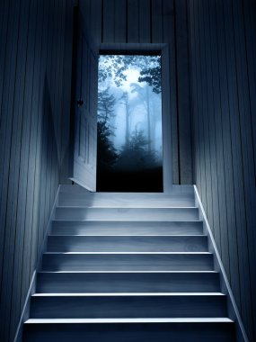 Steps leading from a dark basement to open the door