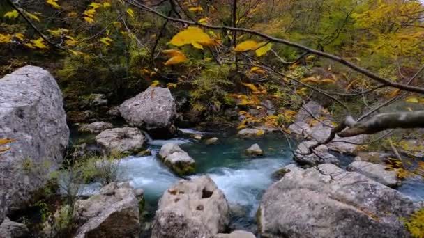 View of the river flowing from the mountain waterfall. Forest river in the mountains. Mountain forest river view. Beautiful Landscape. Fall. Autumn mood.