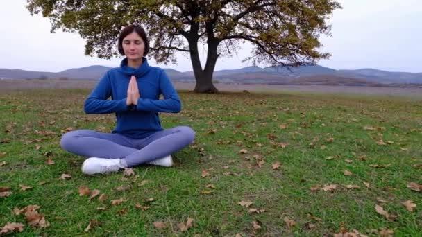 Junge athletische asiatische Frau meditiert auf dem Feld bei alten Eichen, Zen Yoga Meditationspraxis in der Natur