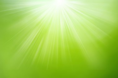 Green blurred background and sunlight stock vector