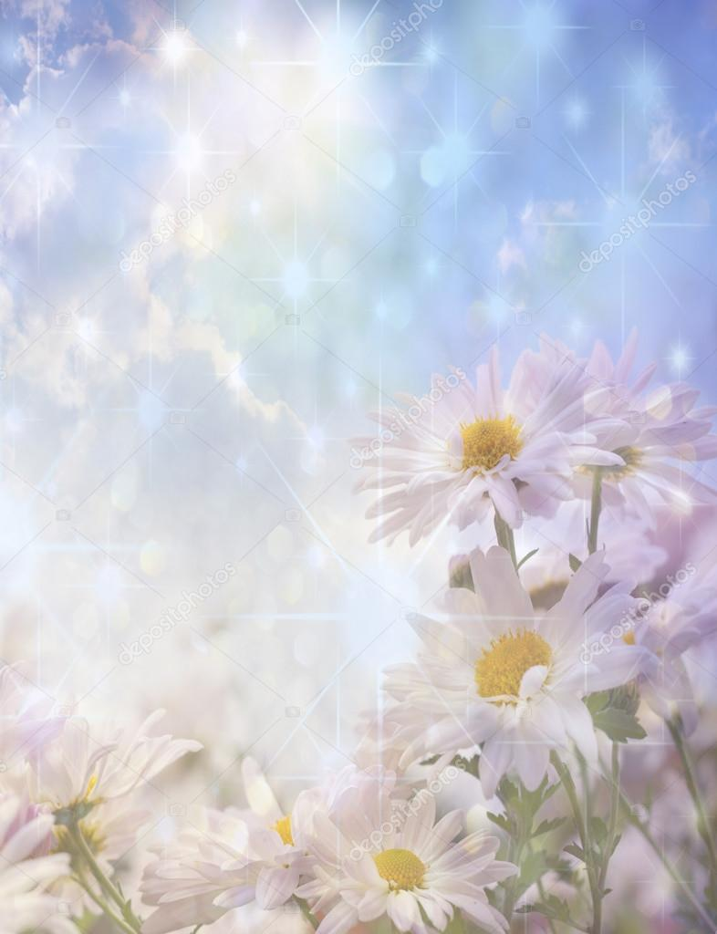 flowers and sunlight