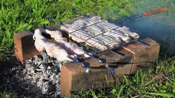 Plátky masa kuřecí smažený na uhlí gril v přírodě
