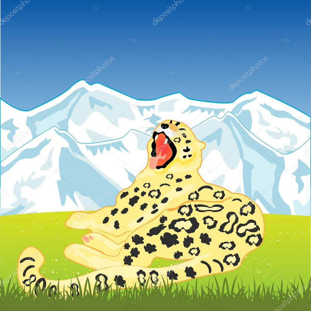 Snow leopard on nature