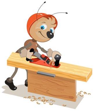 Ant carpenter planed board a plane