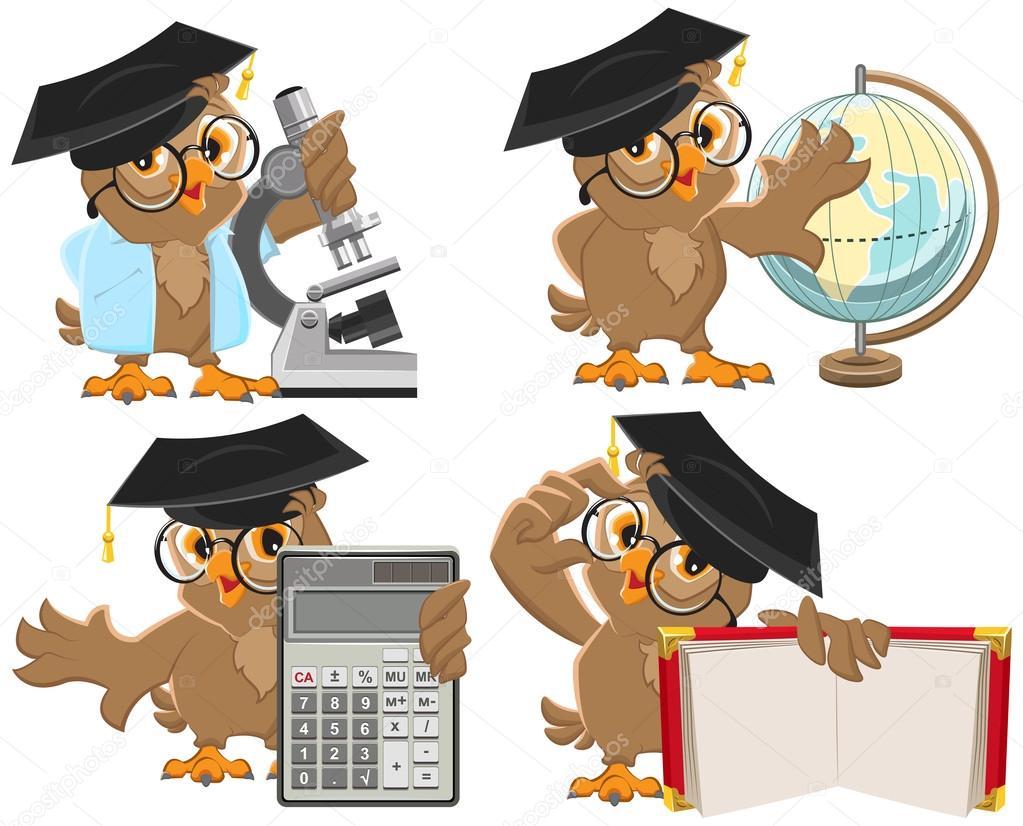 Set owls teachers