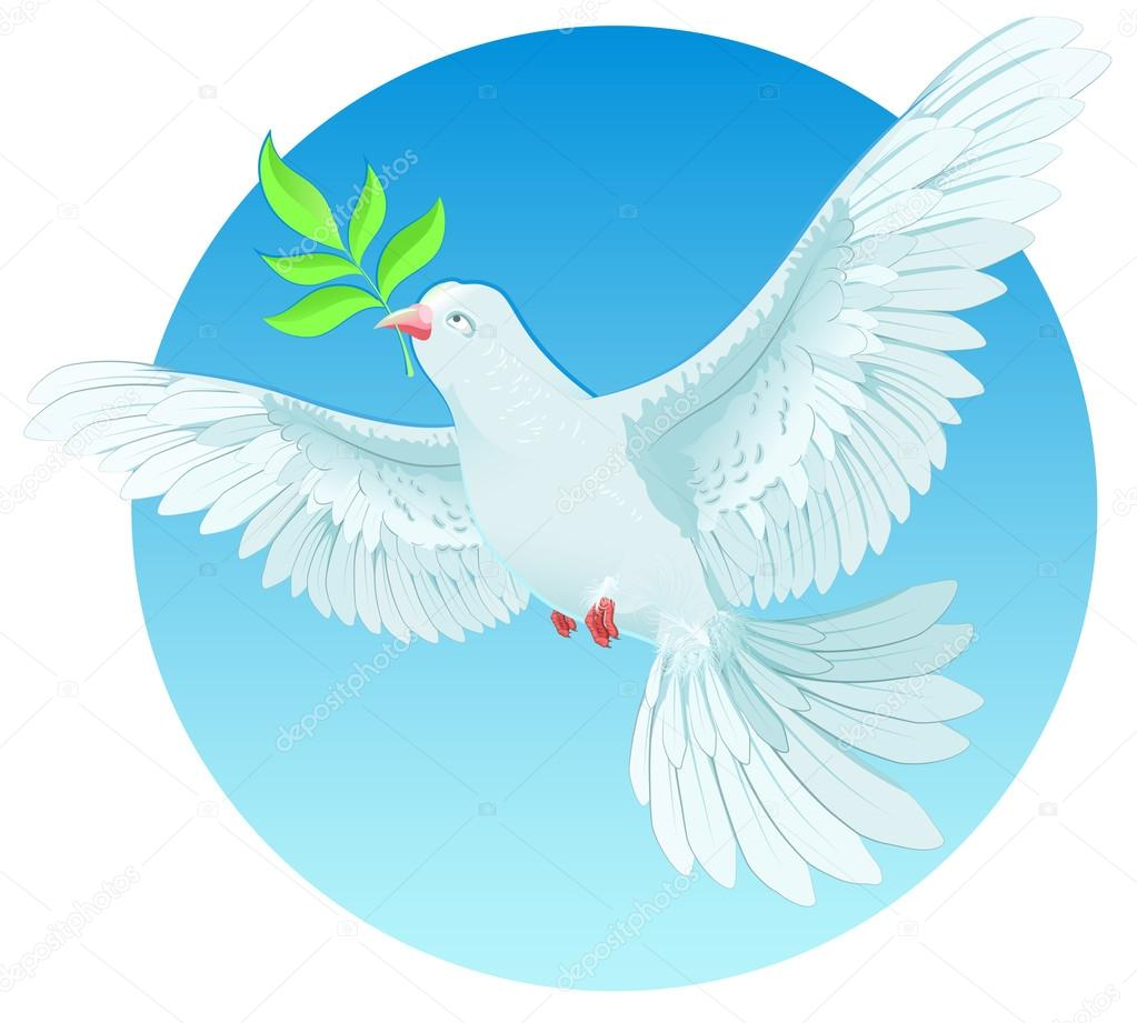 white dove holding green twig international peace day concept dove with green olive branch illustration in vector format vector by orensila