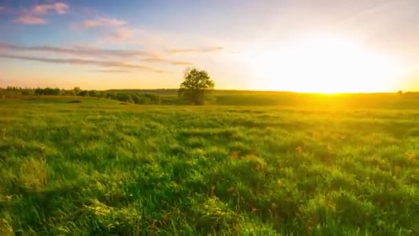sunset and green field, panoramic time-lapse
