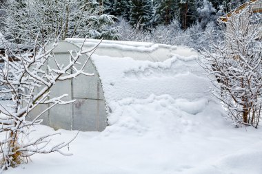 Hothouse brought by snow in the winter
