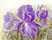 Pittura di fiori di Iris