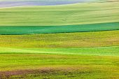 Photo Abstract pattern of rolling fields