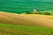 Photo Moravian rolling landscape with hunting tower shack