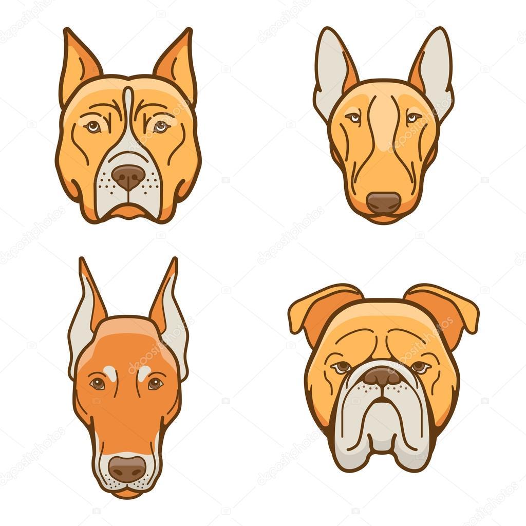 Fotos Caras De Perros Bulldog Caras De Perros De Varias Razas