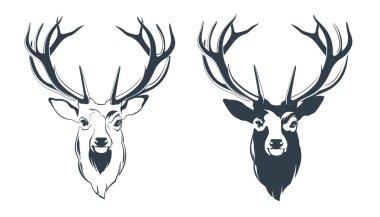 Red Deer Head
