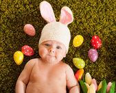 Fényképek baba húsvéti nyuszi