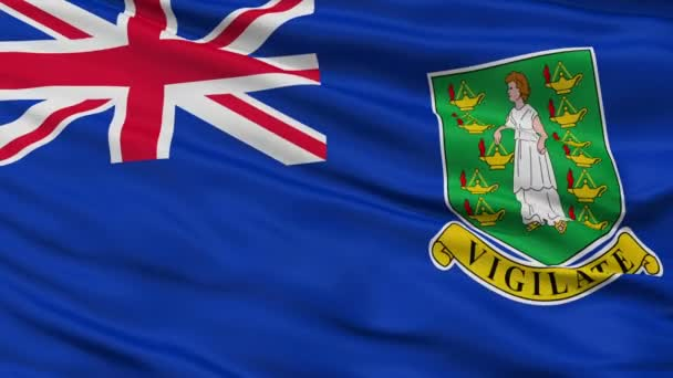 Close Up Waving National Flag of British Virgin Islands