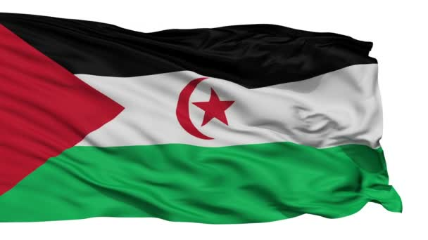 Isolated Waving National Flag of Western Sahara