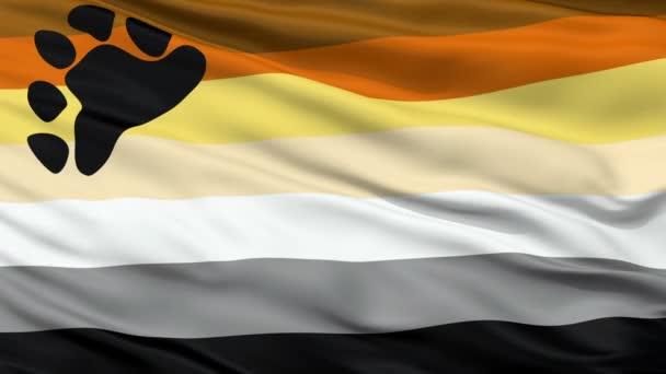 Nést bratrstvo zblízka mávat vlajkou