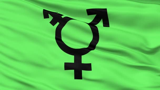 Transgender Symbol Close Up Waving Flag