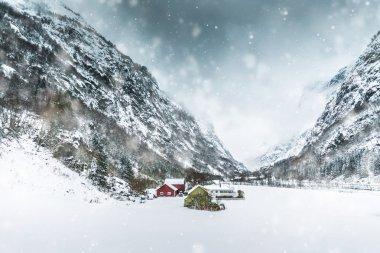Houses in Bergen,Norway