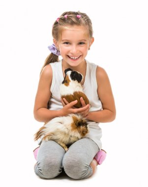 Cute girl with  cavy