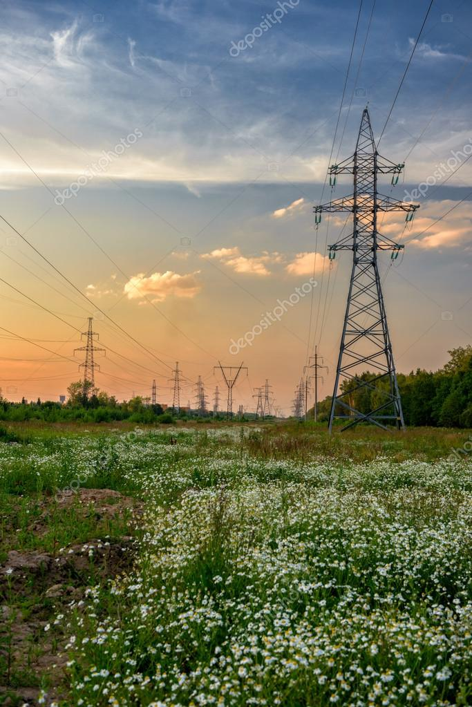 High voltage power line in flower meadow