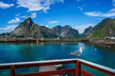 Lofoten archipelago islands