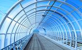 Üveg híd-alagút