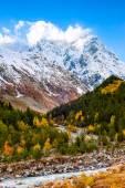 magas hegység