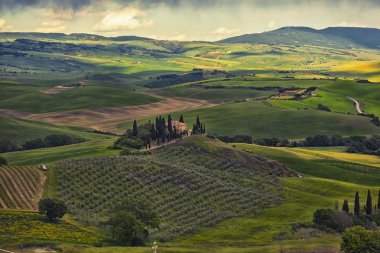 Farmer estate with vineyards  at sunrise in San Quirico d'Orcia, Tuscany, Italy stock vector