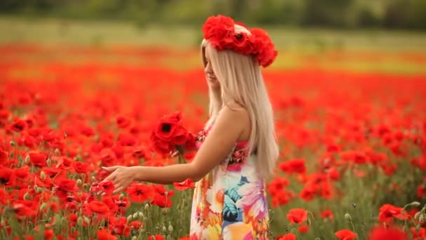Young beautiful woman in a flowery field of red poppies.