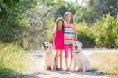 Fényképek Két nővére és egy sétára a kutyák egy zöld parkban, a nyári