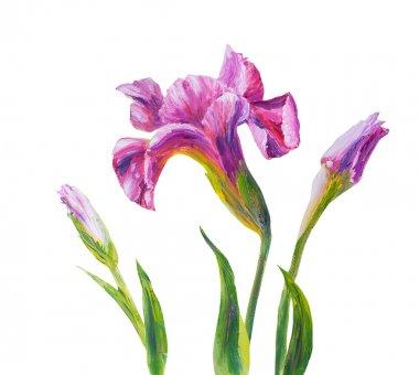 Irises, oil painting on canvas