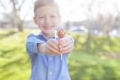 Fotografie chlapec a velikonoční téma