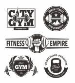 Fotografia Set di emblemi di fitness