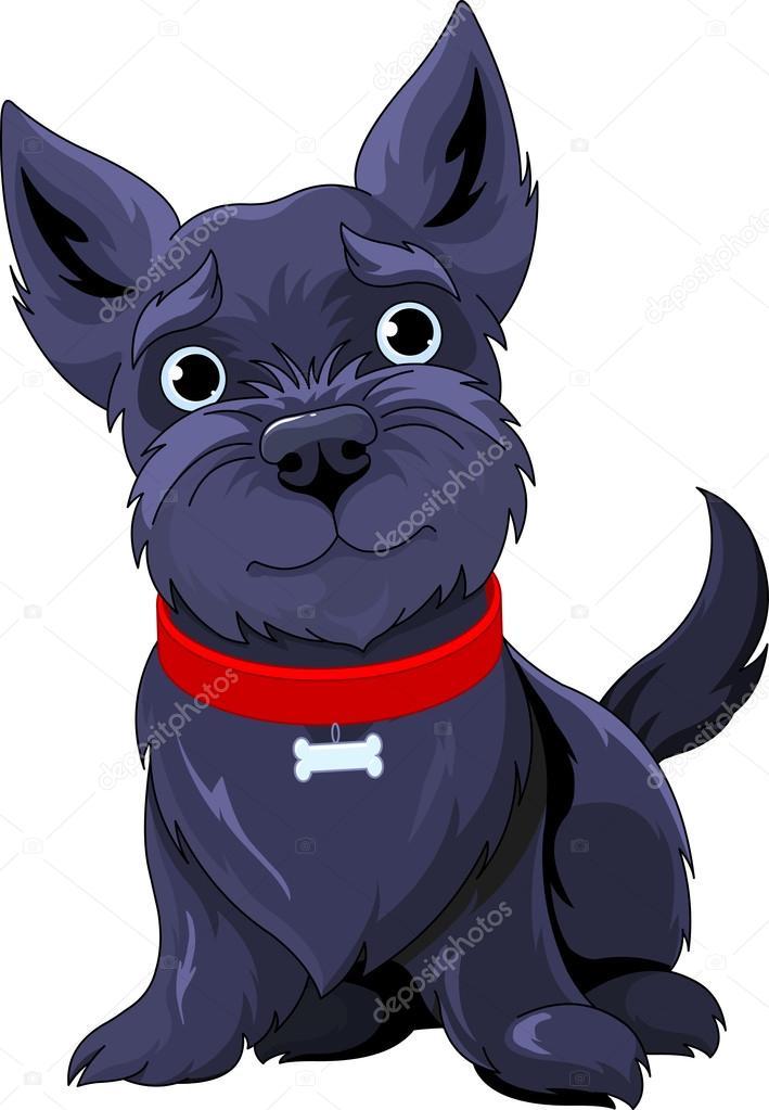 Illustration of Scotch Terrier