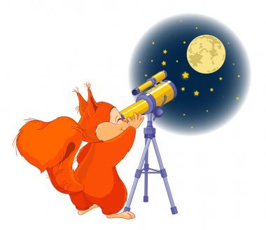 Squirrel looking in telescope on stars